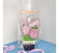 Кашпо с тюльпанами